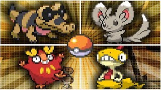Sandile  - (Pokémon) - Como Capturar a Sandile - Darumaka - Minccino & Scraggy | Pokémon Blanco 2 y Pokémon Negro 2