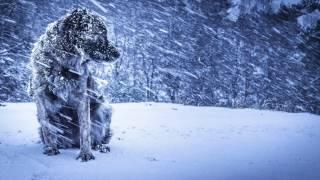 Cand crivatul cu iarna, de Mihai Eminescu, In interpretarea actorului Cristian Alexandrescu