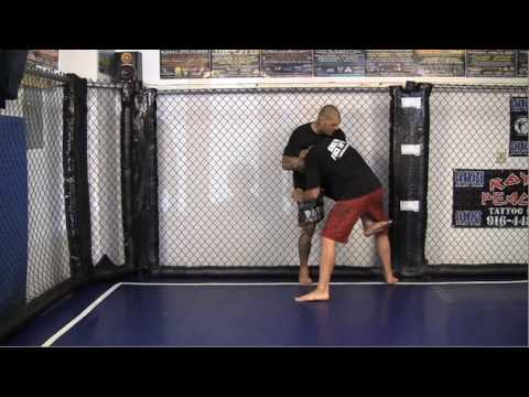 Video of Cage Control