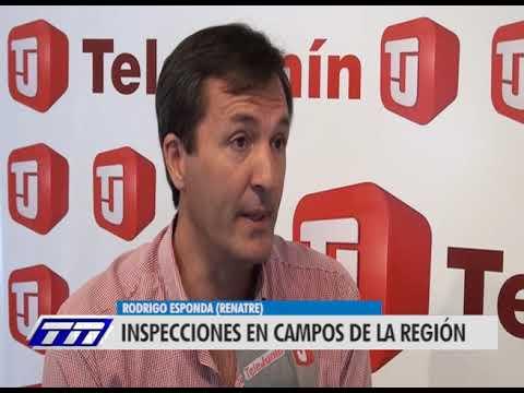 Rodrigo Esponda - Renatre