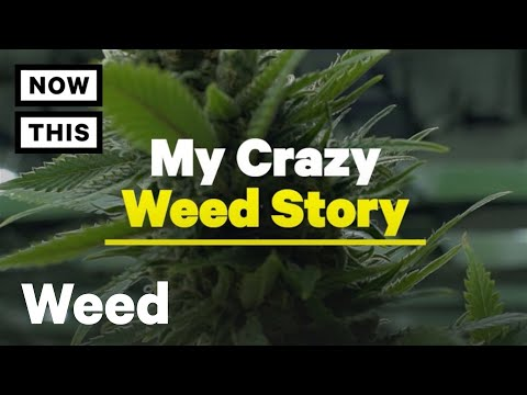 420 Day: We've All Had Wild Weed Stories Like These | NowThis