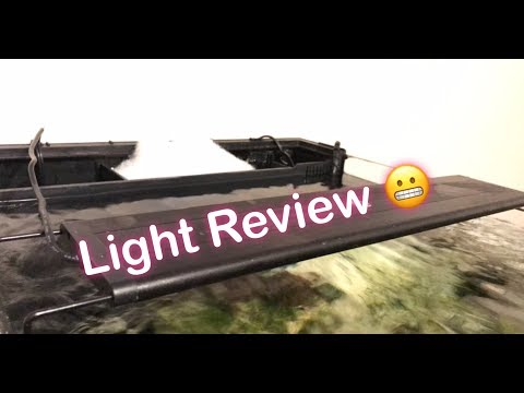 Review of the Current USA Orbit LED Light (18-24 in. Model)