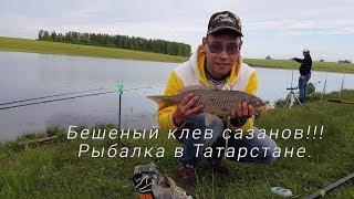 В татарстане отчеты о рыбалке