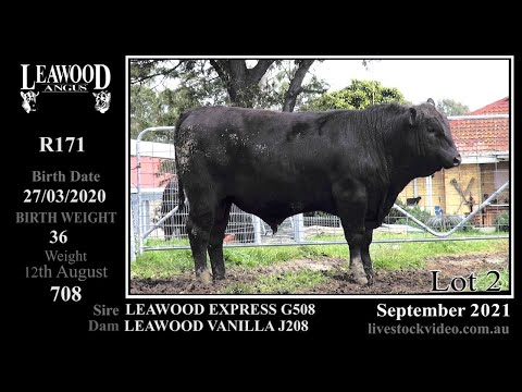 LEAWOOD EXPRESS R171