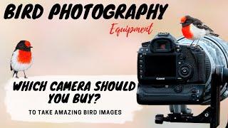 Which CAMERA should you buy to take AMAZING BIRD PHOTOS? - Bird Photography Equipment - Jan Wegener