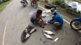 ปลาอย่างเยอะ วิถีชาวบ้านลอยตะคัดปลาใหญ่ช่วงน้ำหลาก