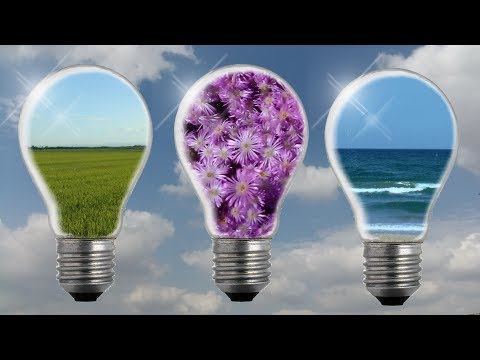 Comparativa de la eficiencia energetica de los diferentes tipos de bombillas