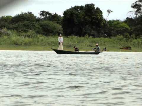 Música Belém do Pará