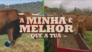 A minha é melhor que a tua: carne barrosã ou alentejana | TVI | 2019 | BOTICAS