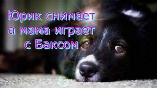 Юрик снимает а мама играет с Баксом)))