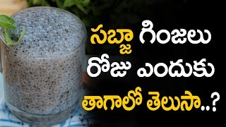 Sabja seeds health benefits and Sabja seeds benefits and Basil seeds benefits in telugu and Basil seeds