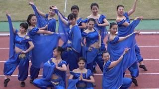 2017西日本B-1グランプリin明石 ダンシングチームKIRARA 1