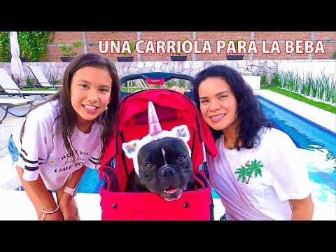 Una Carriola para la Beba | AnaNana Toys