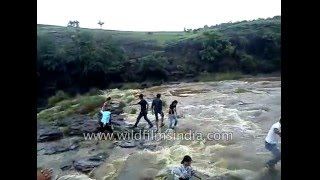 Waterfall incident in India sweeps family into the water