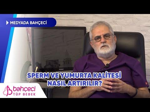 Posta Gazetesi – Sperm ve Yumurta Kalitesi Nasıl Artırılır? – Prof. Dr. Mustafa Bahçeci