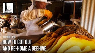 How to Cut Out and Re-Home a BeeHive - The Bush Bee Man