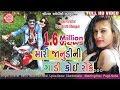 Mari Janudini Gadi Koi Roke ||Dhaval Barot ||Latest New Gujarati Dj Song 2017 ||Full HD Video