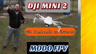 DJI Mini 2 Drone   Lambendo as Árvores   Modo FPV   Vôo Rasteiro