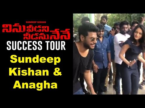 Ninu Veedani Needanu Nene Team Success Tour