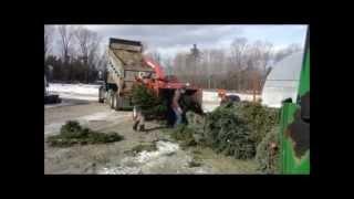 Christmas Tree Chipping at Spring Ledge Farm, New London, NH