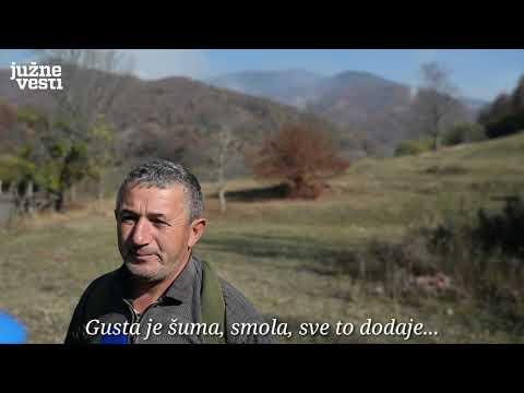 UŽIVO: Požari na jugu - gori Stara planina, vanredna situacija u Trgovištu i Bosilegradu