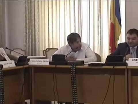 Raport partial al Comisiei pentru administratie publica