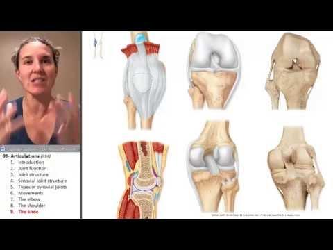 Ból w dolnej części pleców daje z powrotem