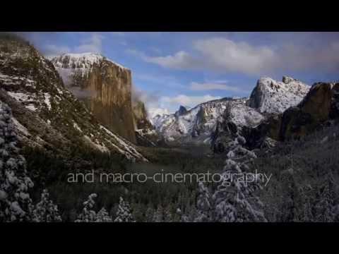 The Moving Art Vault Trailer