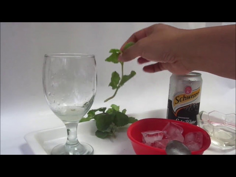 Video Cara Membuat Minuman Segar lemon spring mint