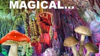 Psychedelic Cave- Virtual mushroom trip hypnosis [Sleepy]