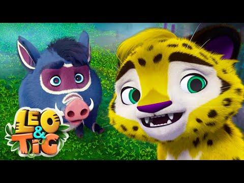 LEO and TIG  - LIVE 💚 Moolt Kids Toons Happy Bear