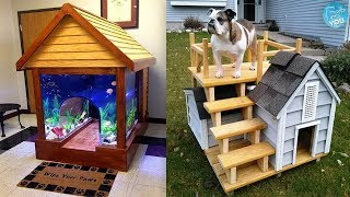 Most Creative Dog Houses Ever