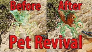 Pet Revival