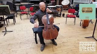 Versum Solo Cello D String - Multi-Alloy: Medium
