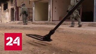 Разминирование Пальмиры: счет обезвреженных боеприпасов идет на сотни