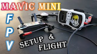 Mavic Mini FPV Freestyle Footage