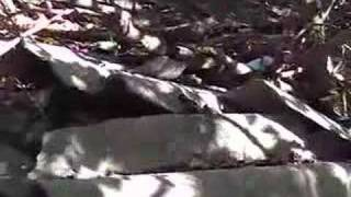 Discariche di amianto sul Carso