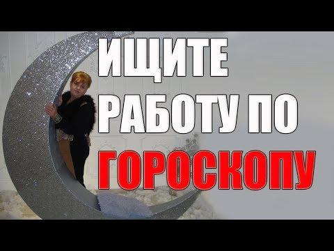 Харьков талисман режим работы