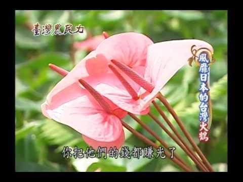 臺灣農民力第05集