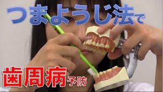 歯周病予防はつまようじ法ブラッシングで!