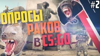 МАМКА БЬЁТ ШКОЛЬНИКА - Опросы Раков в CS:GO