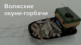 Рыбалка 73 ульяновск отчеты зимой