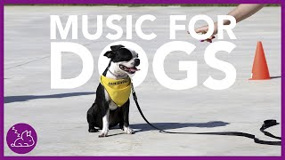 Music For Dogs: Deep Relaxation Music For Your Dog! (INSTANT)