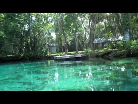 Video Gainesville Day Trip: Kayaking Crystal River, FL