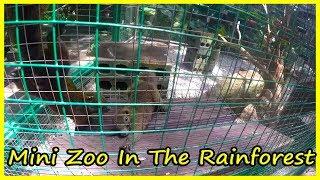 Mini Zoo In The Rainforest Review 2020. Yanoda Rain Forest. Hainan, China