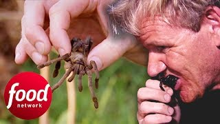 Gordon Ramsay Tries To Eat A Fried Spider In Cambodia | Gordons Great Escape