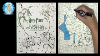 Harry Potter Magical Creatures Coloring Book Speed Color