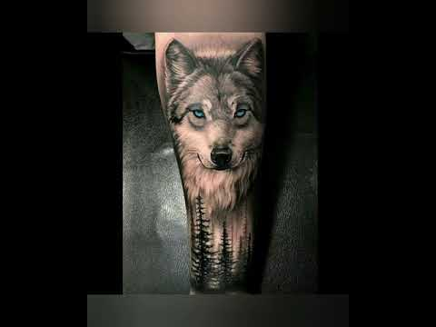 Top 15 tatuagens de lobos espetaculares!!