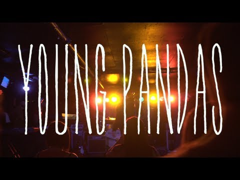 Introducing: Young Pandas