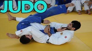 Judo Vines #6